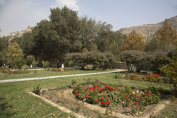 Flower beds and trees in the Gardens of Babur | Jardines de Babur | Afghanistán