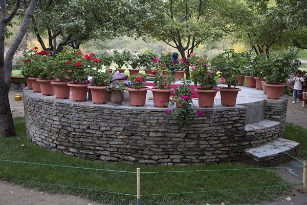 Circular platform with flowers in the Gardens of Babur | Gardens of Babur | Afghanistan