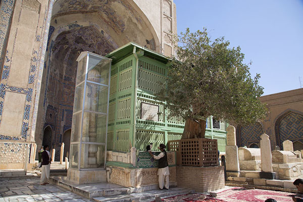 Picture of Gazar Gah (Afghanistan): Tomb of Ansari with ilex tree and marble pillar to the left