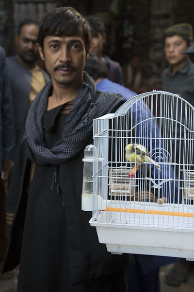 的照片 Man with parakeet in cage at Ka Faroshi - 阿富汗
