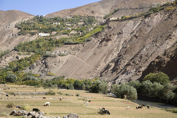 Upper part of the Panjshir valley | Valle de Panjshir | Afghanistán
