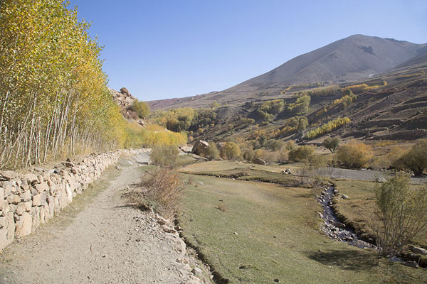 Track with trees through Qazan valley | Qazan Valley | Afghanistan