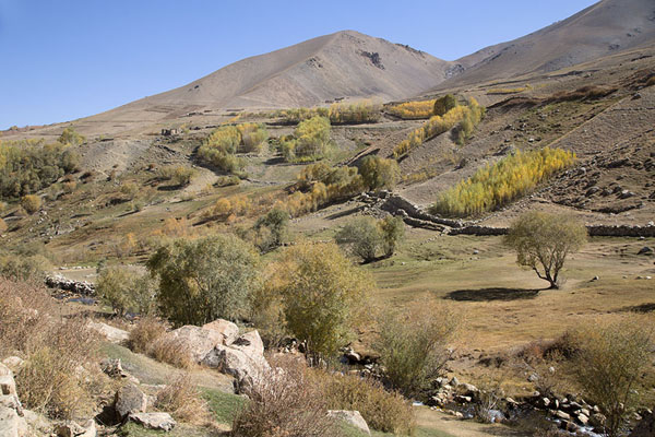 River and trees on the slopes of Qazan valley | Qazan Valley | Afghanistan