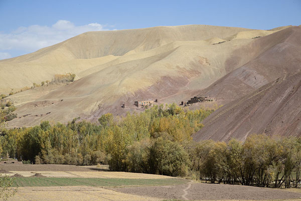 Picture of Trees at the base of the mountains in Qazan valleyQazan - Afghanistan