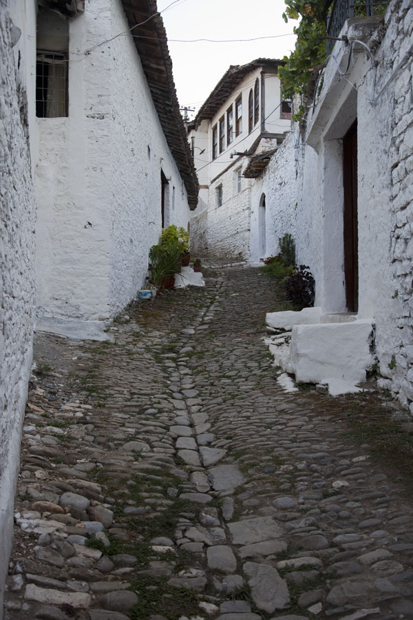 One of the narrow cobble stone streets leading up past white washed houses of Mangalem | Mangalem | Albania
