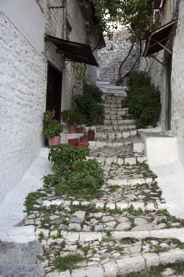 Picture of Mangalem (Albania): White-washes walls and stairs in one of the many narrow streets of Mangalem