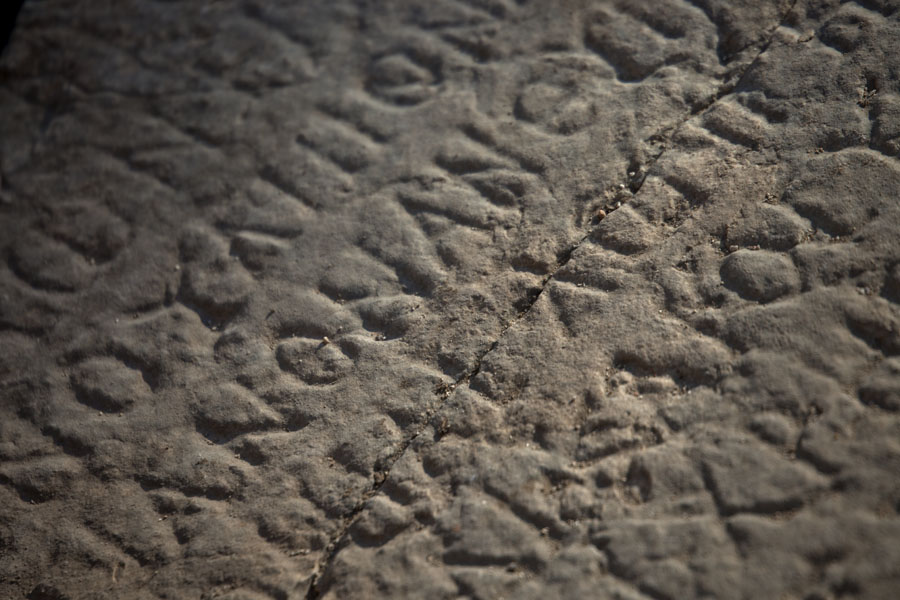 Picture of Butrint (Albania): Detail of a stele lying on the floor of the ruins of what once was the gymnasium