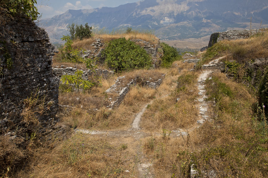 Parts of the ruins are overgrown | Gjirokastër Castle | Albanie