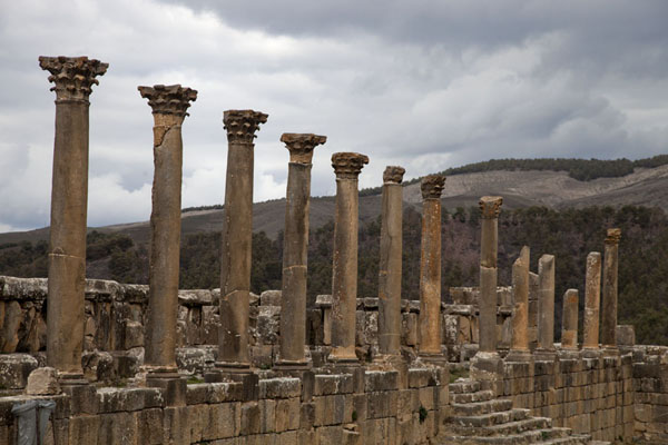 Picture of Djemila (Algeria): Columns at the eastern side of the House of Castorius on Severus Square