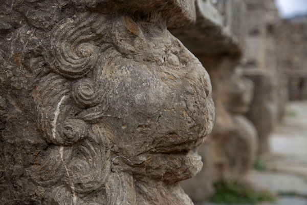 Picture of Djemila (Algeria): Lion head supporting a market stall at the market of Cosinius