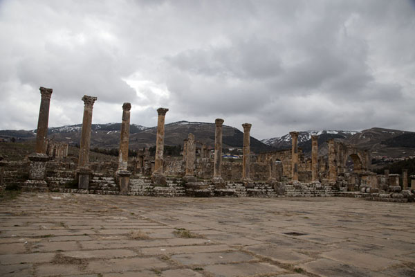 Row of columns at the southern side of the Forum | Djemila | Algeria