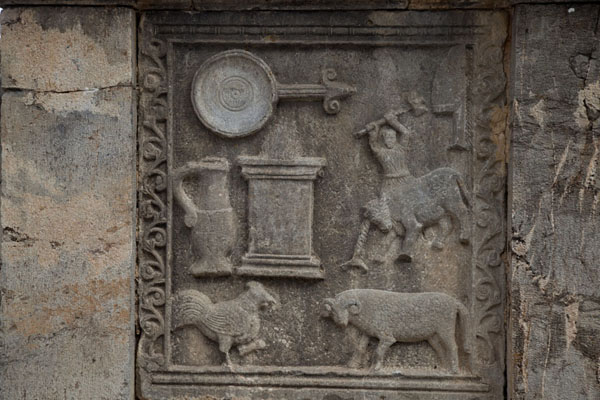 Detail of a altar at the Forum with sacrifice scenes | Djemila | Algeria