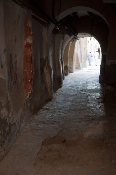 This street looks like a tunnel | El Atteuf | Algeria