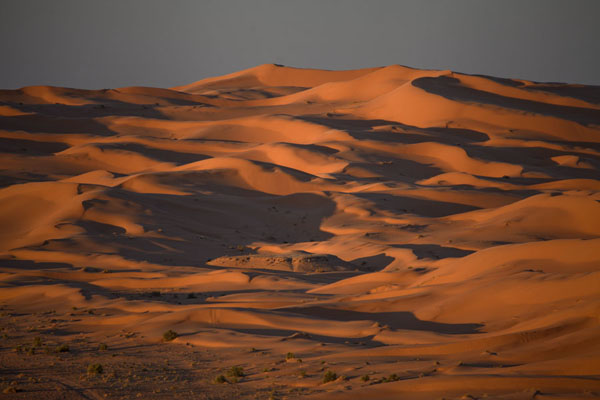 Sunset over the sand dunes near Taghit | Taghit | Algérie