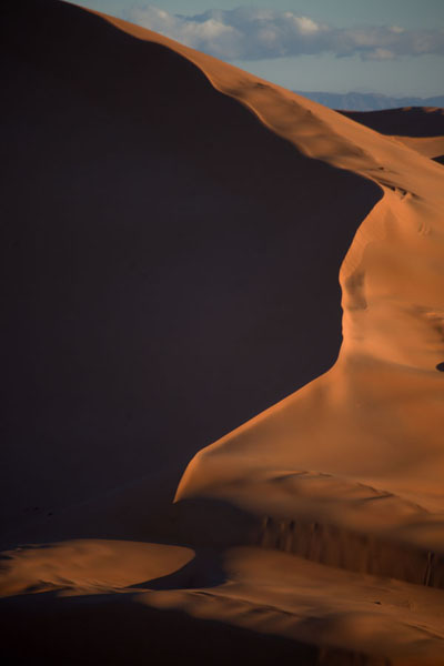 Photo de Sand dune with sharp lines defined by the early morning sun - Algérie - Afrique