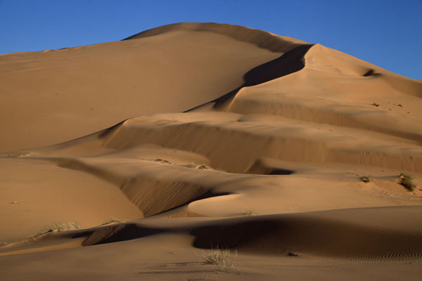 Picture of Sand dune near TaghitTaghit - Algeria