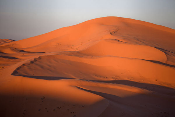 Foto di Sunset over the sand dunes of TaghitTaghit - Algeria