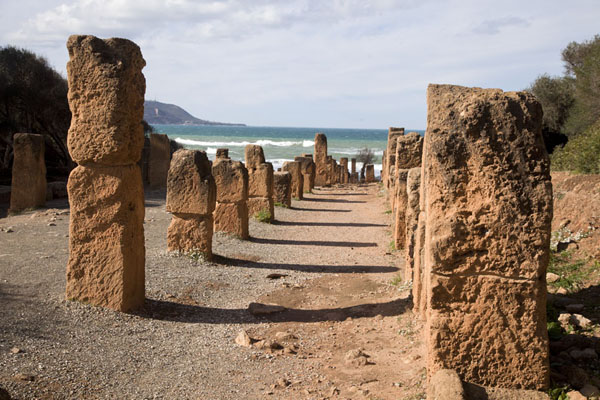 Picture of Tipaza (Algeria): Looking towards the sea along the Cardo Maximus