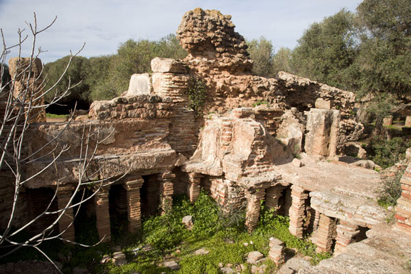 Picture of The ruins of the baths of Tipaza