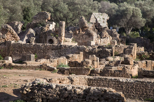 Picture of Tipaza (Algeria): The baths of Tipaza lie largely in ruins
