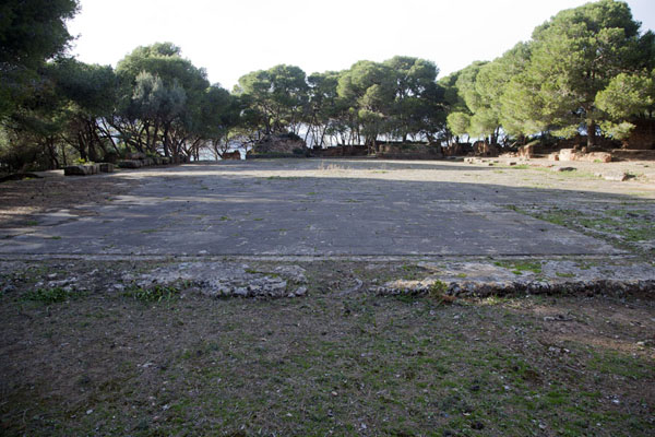 Picture of The ruins of the forum of Tipaza