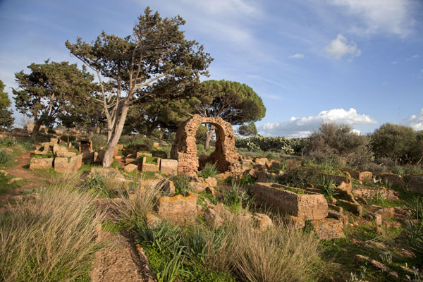Foto van The cemetery of the eastern site of TipazaTipaza - Algerije
