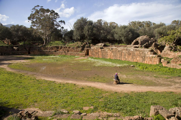 的照片 The amphitheatre of Tipaza - 阿尔及利亚