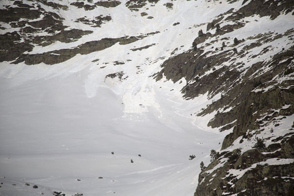 Picture of Pla de l'Estany (Andorra): Traces of avalanches and our own self-made trail in the snow above Pla de l'Estany