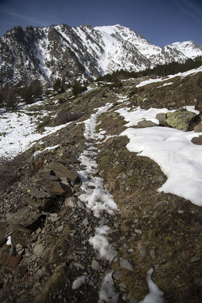 Picture of Not much snow left at lower altitudes on the slopes of Pla de l'EstanyPla de l'Estany - Andorra