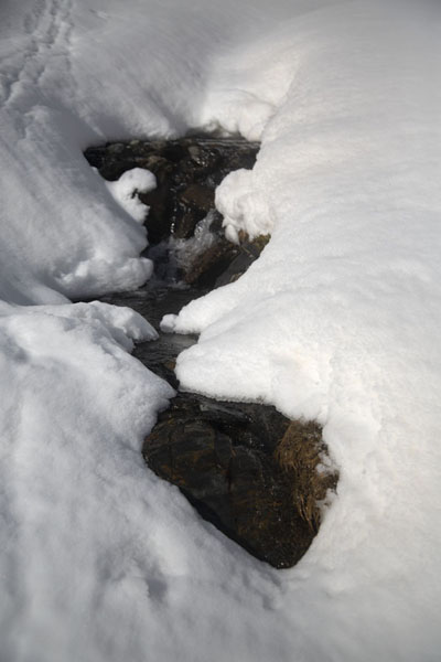 Small waterfall mostly hidden by a thick layer of snow near Pla de l'Estany | Pla de l'Estany | Andorra