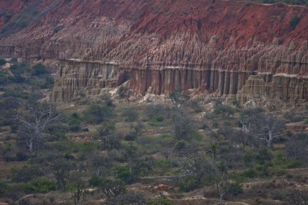 Picture of Cliffs rising steep from the plain with trees belowMiradouro da Lua - Angola