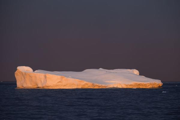 Picture of Antarctic Sound (Antarctica): Early sunlight falling on an iceberg in the Antarctic Sound