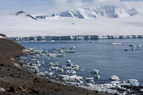 View of the bay at Brown Bluff with glaciers and icebergs | Brown Bluff | Antarctica