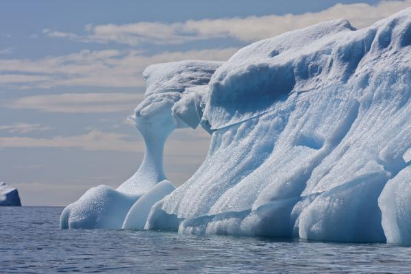 Close-up of one of the many icebergs at Brown Bluff | Brown Bluff | Antarctique