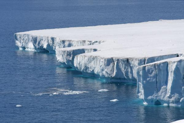 Photo de Glacier face at Brown BluffBaily Head - Antarctique