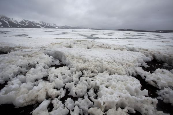 Photo de Ice floes washed ashore at the caldera of Deception Island - Antarctique
