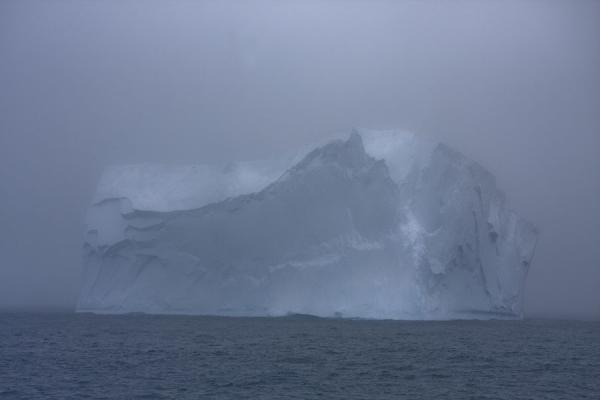 Massive iceberg just off Point Wild | Point Wild | Antartide