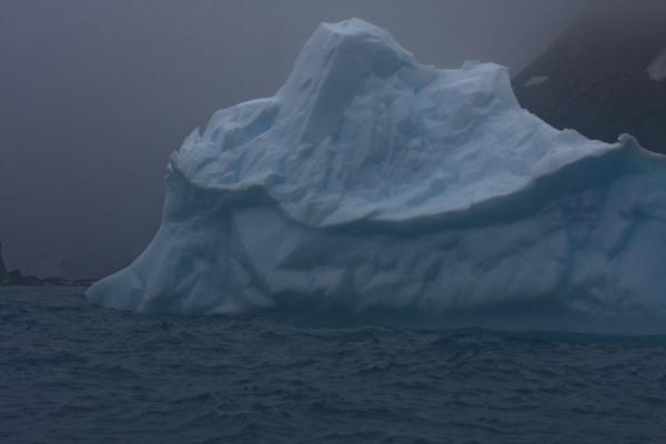 Picture of Iceberg floating in the sea off Point Wild