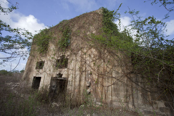 Foto van The backside of the still factory of Betty's HopeBetty's Hope - Antigua en Barbuda