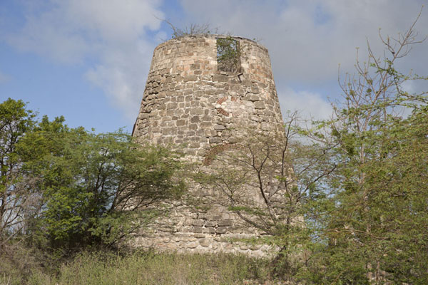 One of the two windmills of Betty's Hope | Betty's Hope Plantation | Antigua en Barbuda