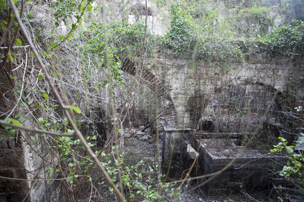 Tne ruined interior of the still factory | Betty's Hope Plantation | Antigua et Barbuda