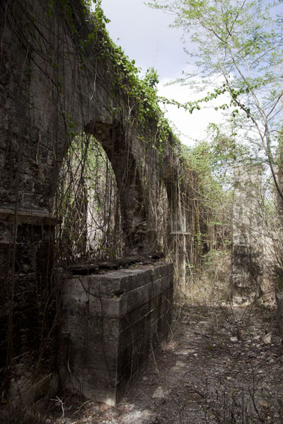 Foto van The still factory of Betty's Hope still lies in ruins - Antigua en Barbuda - Amerika