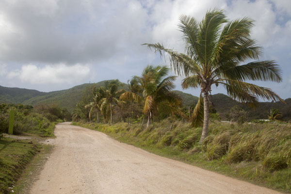 Foto di The dirt track leading up to Mount ObamaMount Obama - Antigua e Barbuda