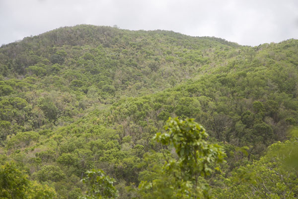 Mount Obama seen from below | Mount Obama | Antigua y Barbuda
