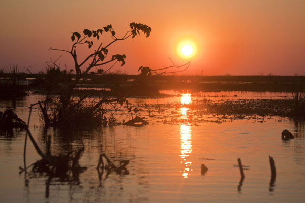 Photo de Laguna del Iberá sunset - l'Argentine - Amérique
