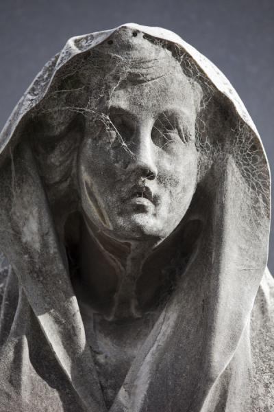 Picture of La Recoleta Cemetery (Argentina): Spiderweb in the statue of a woman