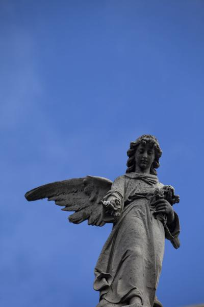 Picture of La Recoleta Cemetery (Argentina): Looking up a statue of an angel on a mausoleum