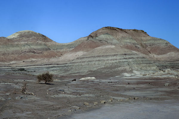 Picture of Parque Ischigualasto (Argentina): The Valley of the Moon is a barren landscape of multi-coloured mountains