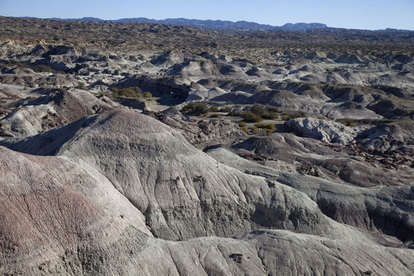 Picture of The Valley of the Moon landscape seen from a viewpointParque Ischigualasto - Argentina