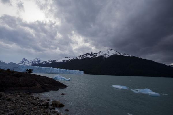 Picture of Lago Argentino with face of Perito Moreno glacier